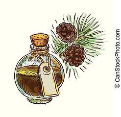 sketch., alquitrán, pino, acuarela, imitación, botella, branch.