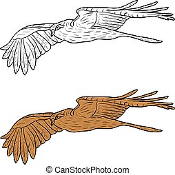 Sketch beautiful eagle on a white background. Vector illustration.