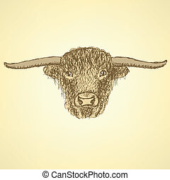 Sketch bull head in vintage style, background