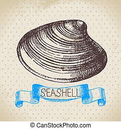 sketch., concha marina, ilustración, mano, vendimia,...