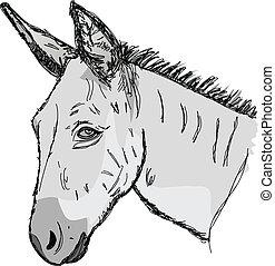 Sketch donkey head