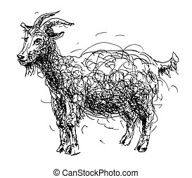 sketch doodle drawing of goat or sheep, chinese lunar symbol 2015 year, black and white