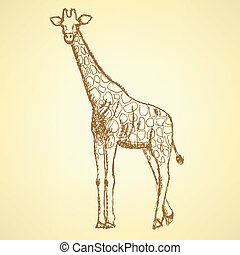 Sketch giraffek, vector vintage background