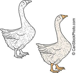 Sketch grey goose on a white background. Vector illustration.