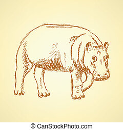 Sketch hippo, vector vintage background