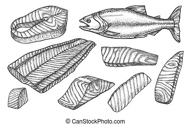 Sketch icons of salmon fish cut, filet and steaks - Salmon ...