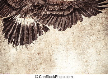 Sketch made with digital tablet of american eagle