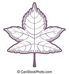 Sketch of a maple leaf