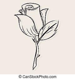 Sketch of a rose flower