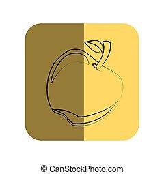 sketch of apple fruit in square frame