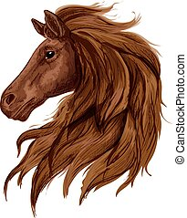 Sketch of brown horse head with arabian stallion