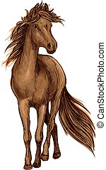 Sketch of brown horse with bay arabian stallion