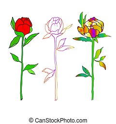 Sketch of colorful roses on a white background.