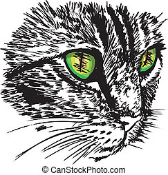 Sketch of curious little cat looking at something on the ground. Vector illustration