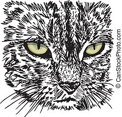 Sketch of curious little cat looking at something on the...