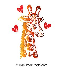 Sketch of  giraffe isolated on white background