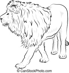 Sketch of   lion.