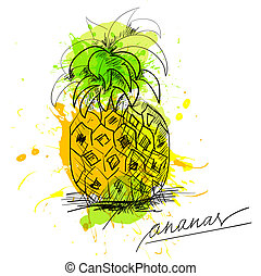 Sketch of pineapple