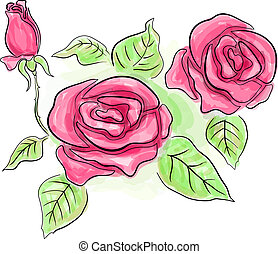 Sketch of pink roses in transparent colors - Sketch of...