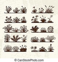 Sketch of plants on shelves for your design