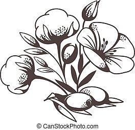 Sketch of poppy flowers
