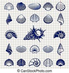 Sketch of sea shells vector illustration. Sea shell...