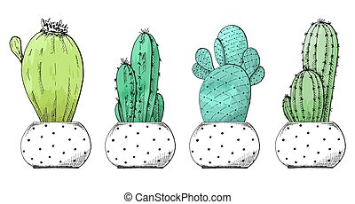 Sketch of succulents in pots. Stylized watercolor. Vector ...