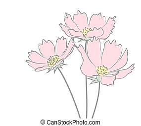 Sketch of wild flowers.
