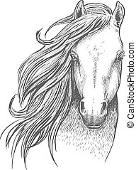 Sketch of wild mustang horse for equine design - Beautiful...