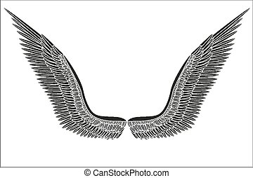 Sketch open black angel wings. Vector.