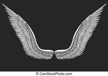 Sketch open white angel wings. Vector.