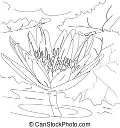 sketch outline lotus flower art line
