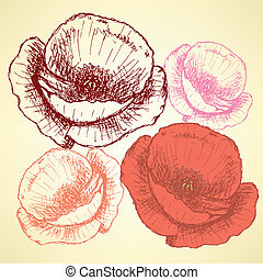 Sketch poppy, vector vintage background