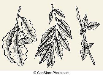 sketch spring branches