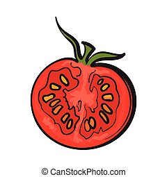 Sketch style drawing of ripe red half tomato