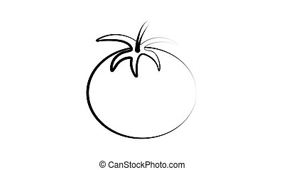 Sketch style drawing of shiny ripe tomato, vector illustration isolated on white background. Appetizing bright red tomato, side view, hand drawn illustration