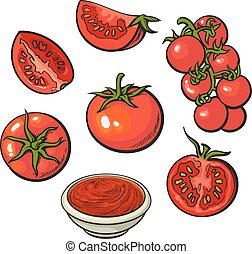 Sketch style vector illustration set of ripe red tomatoes