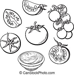 Sketch style vector illustration set of ripe tomatoes