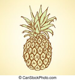 Sketch tasty pineapple in vintage style, vector