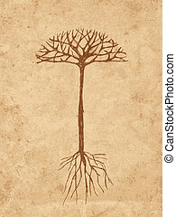 Sketch tree with roots on old grunge paper