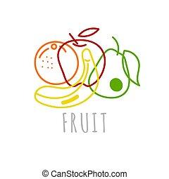 Sketch vector fruit