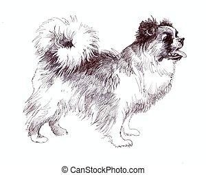 sketched Puppy dog hand drawn illustration.