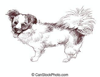 sketched Puppy dog hand drawn illustration.