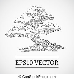 Sketched vintage bonsai tree - Sketched vintage manga bonsai...