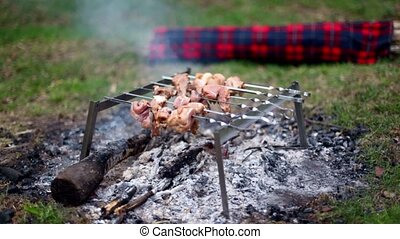 Skewers with kebab on embers at grass, log covered by plaid,...