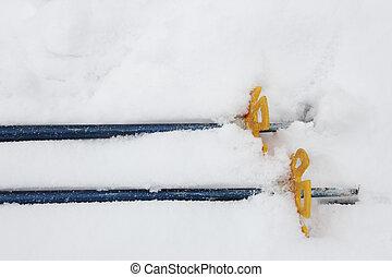 ski and hiking poles