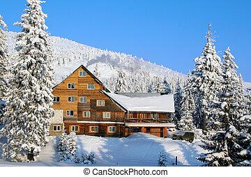 ski, chalet