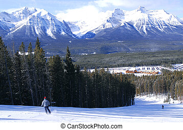 ski fahrend, in, berge