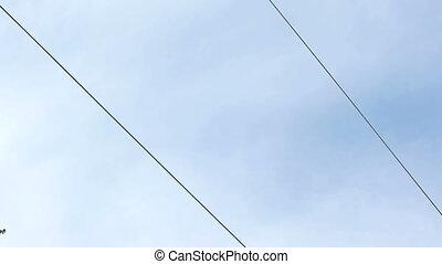 ski lift on the sky background
