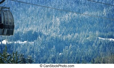 Ski Lifts Passing Snowy Forest